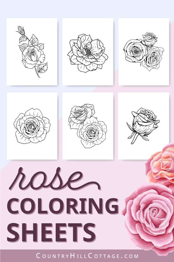 cute rose coloring pages