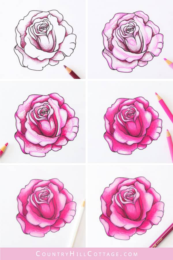 step by step instructions for how to draw a rose