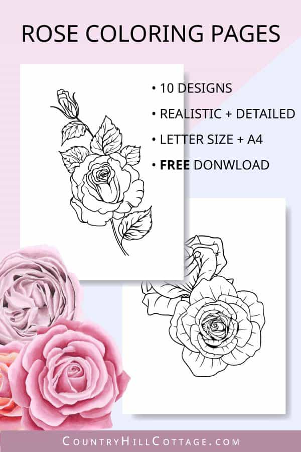 rose coloring pages