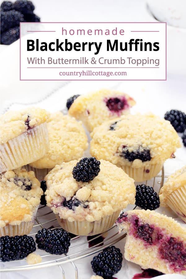 blackberry muffins buttermilk