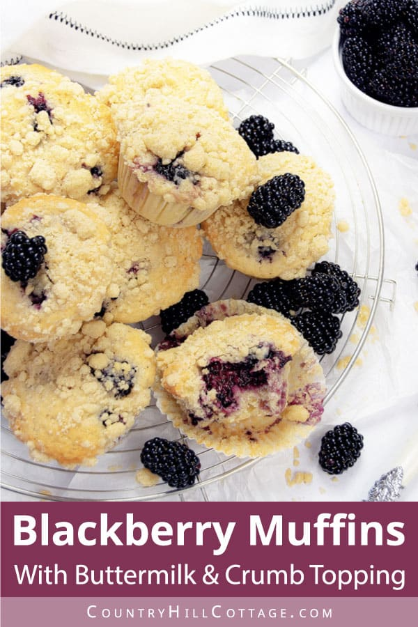 blackberry muffins with buttermilk