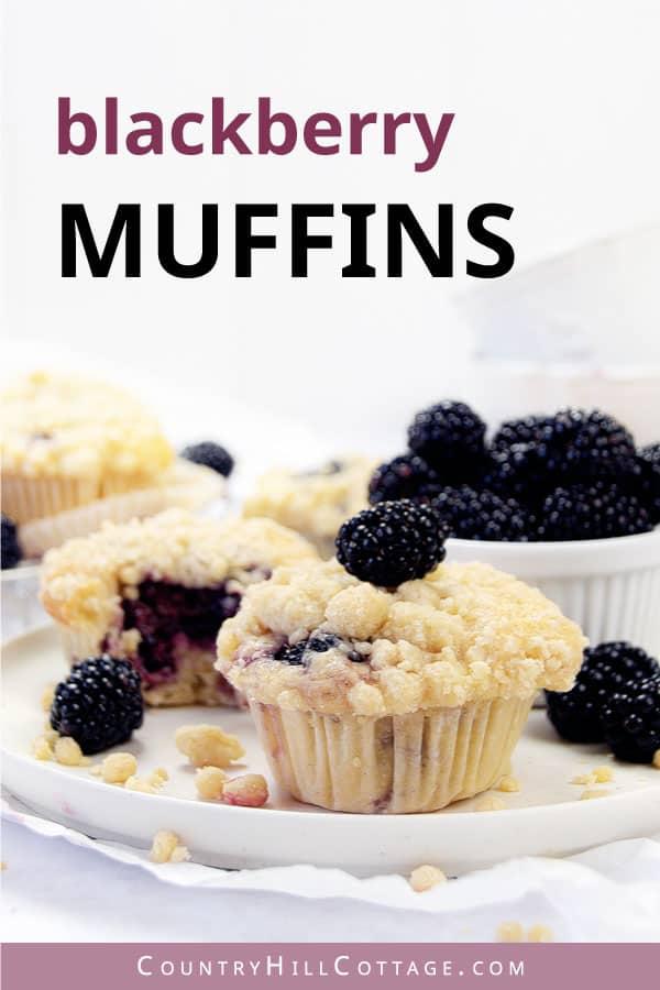 healthy blackberry muffins