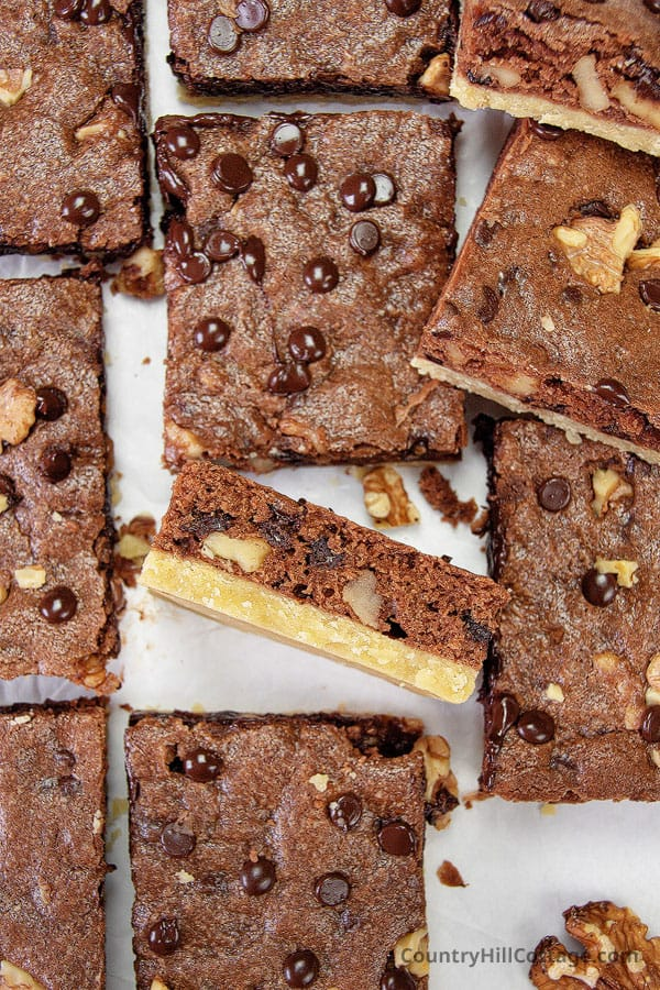 brownies with chocolate chips