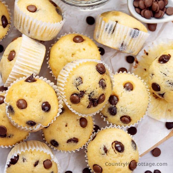 Mini Chocolate Chip Muffins