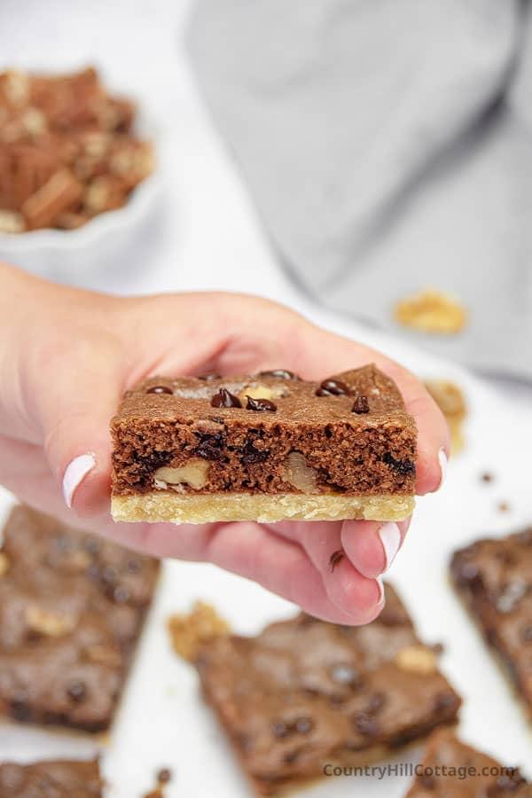 chocolate walnut brownie recipe
