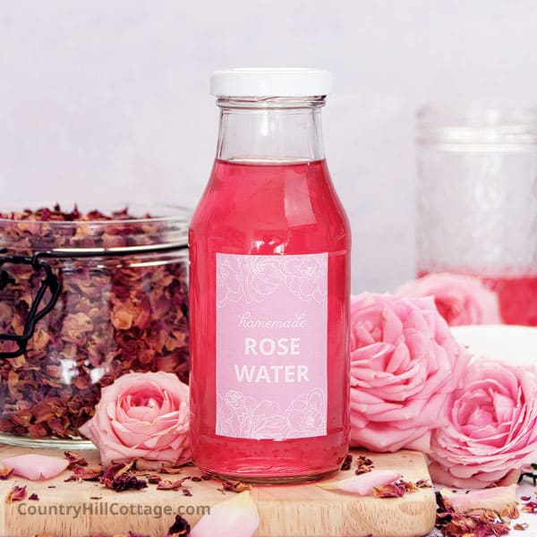DIY Rose Water Recipe with Tips for Benefits + Uses {Infusion Method}