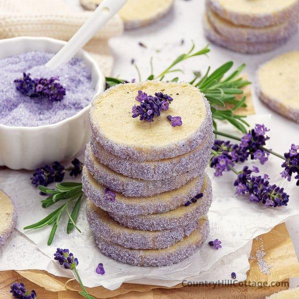 homemade lavender cookies