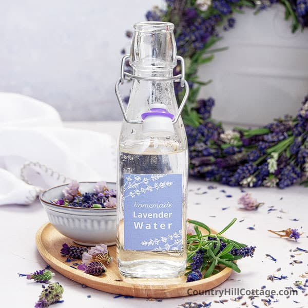 How To Make Lavender Water {With Fresh Or Dried Lavender}
