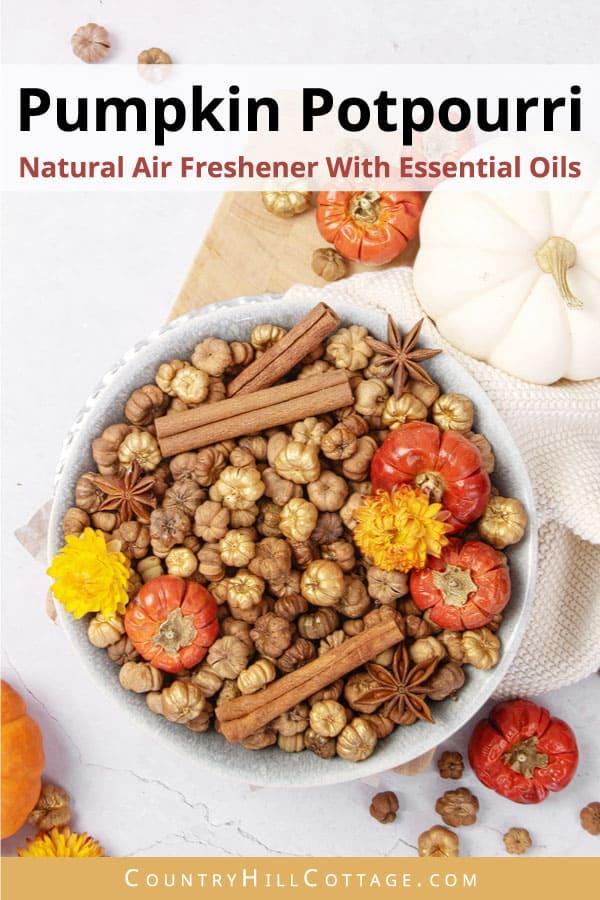 homemade pumpkin spice air freshener