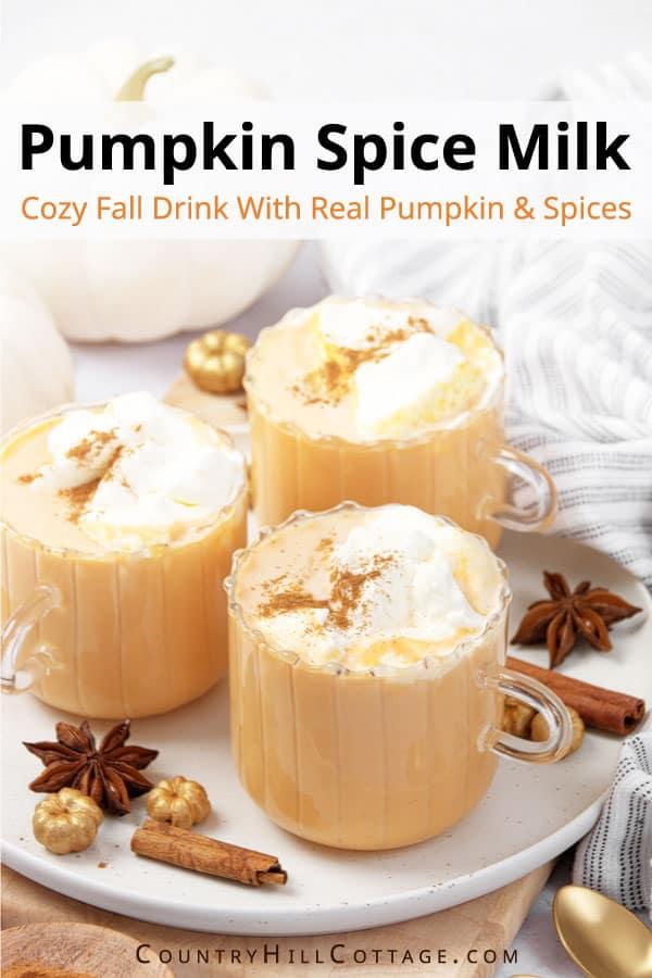 hot pumpkin drinks