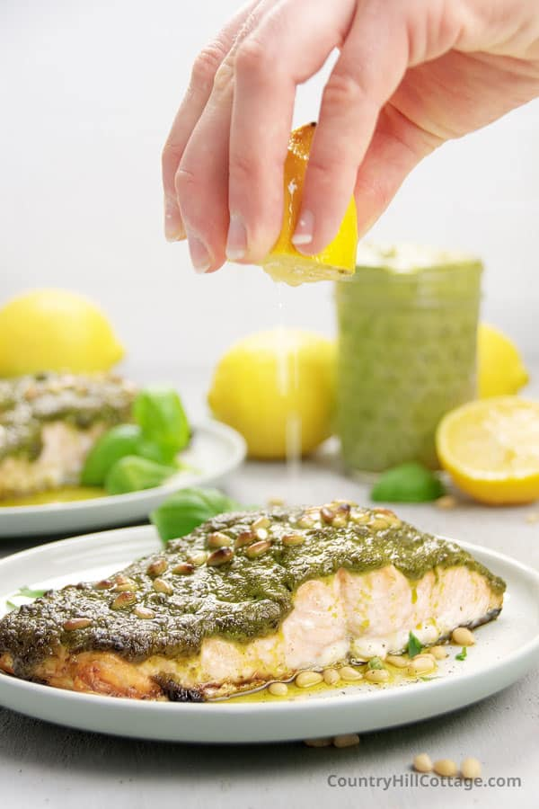 lemon pesto salmon recipe