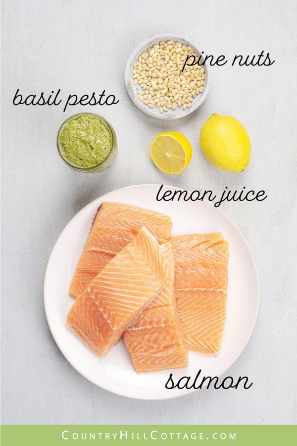pesto crusted salmon ingredients